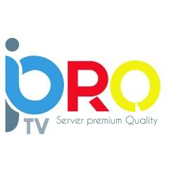 Subscription 12 months IPTV PRO